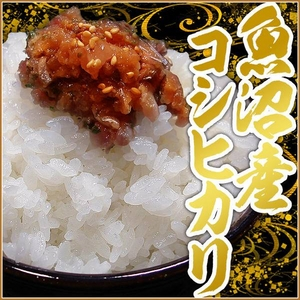 【平成27年産】中村農園の魚沼産コシヒカリ玄米30kg(5kg×6袋) - 拡大画像