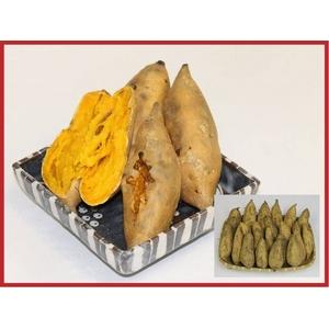 安納芋(安納黄金)5kg - 拡大画像