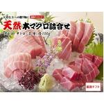 【三崎恵水産】天然本マグロ詰合せセット (大トロ・中トロ・赤身 各100g、醤油・わさび付)