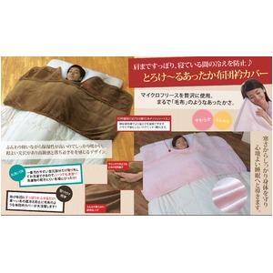 とろけ~る 毛布のような布団衿カバー キャメル