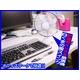 【電丸】乾電池&USB 2WAY電源の扇風機 白くまの風スイング - 縮小画像3