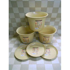 土に還る植木鉢・皿 3PC(大) 335071 - 拡大画像