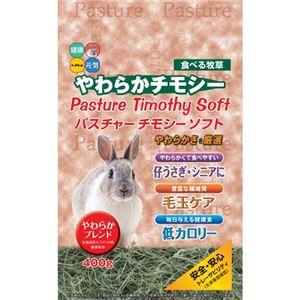 (まとめ) 新パスチャーチモシーソフト 400g 【ペット用品】 【×12セット】 - 拡大画像