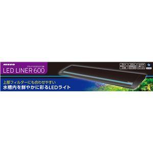LEDライナー600 ブラック 【水槽用品】 【ペット用品】 - 拡大画像