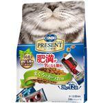 (まとめ)日本ペットフード コンボPキャットドライ 肥満猫用 240g (猫用・フード)【ペット用品】【×12 セット】