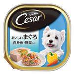 (まとめ)シーザー おいしいまぐろ 白身魚・野菜入り 100g【×96セット】【ペット用品・犬用フード】