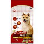 (まとめ)ウェルケア 柴専用 オールステージ 3kg【×4セット】【ペット用品・犬用フード】