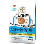 (まとめ)ラシーネ スコティッシュ・フォールド 600g【×10セット】【猫用フード/ペット用品】
