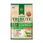 (まとめ)ケイナイン・トリビュート チキン 小粒タイプ インドアドッグ 800g(200g×4袋) (ペット用品・犬フード)【×10セット】