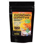 (まとめ) フトアゴヒゲトカゲ昆虫ブレンドフード125g (ペット用品) 【×10セット】