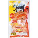 (まとめ) ササミのチップ 小丸タイプ 100g (ペット用品・犬用フード) 【×5セット】