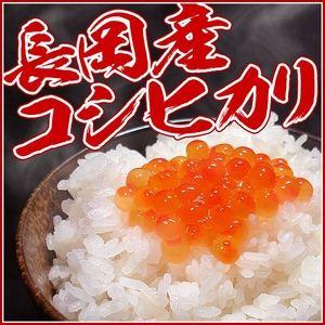 新潟県長岡産コシヒカリ10kg  - 拡大画像