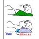 首と肩の隙間を埋める 洗える低反発ショルダー枕(専用カバー付) 綿100% 日本製 - 縮小画像4