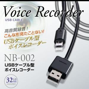 【防犯用】【小型ボイスレコーダー】USBケーブル型ボイスレコーダー スパイダーズX (NB-002) 簡単操作 32GB対応 - 拡大画像