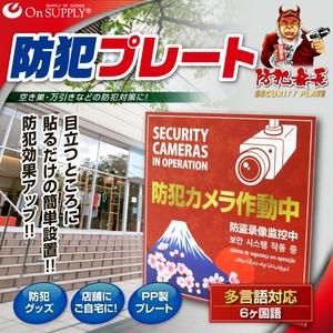 オンサプライ(On SUPPLY) 防犯 セキュリティ プレート「防犯カメラ作動中」 PP製 多言語対応 OS-504 【2枚セット】 - 拡大画像