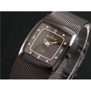SKAGEN(スカーゲン) 腕時計 メッシュ レディース 380XSMM1 - 拡大画像