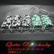 Quattro Assi(クアトロ・アッシー)ポーカーチップ100枚セット<2色グリーン&ブラック>