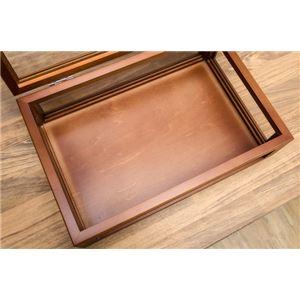 コレクションケース/ディスプレイケース 単品 【小】 幅30cm 木製フレーム ガラス製 ブラウン 【完成品】