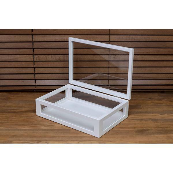 シンプルなコレクションケース/ディスプレイケース 単品 【小】 幅30cm 木製フレーム ガラス製 ホワイト(白) 【完成品】
