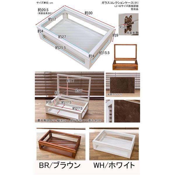 コレクションケース/ディスプレイケース 単品 【小】 幅30cm 木製フレーム ガラス製 ホワイト(白) 【完成品】