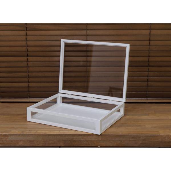 コレクションケース/ディスプレイケース 単品 【大】 幅40cm 木製フレーム ガラス製 ホワイト(白) 【完成品】