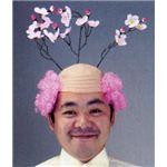 【パーティーグッズ】お花見父ちゃん