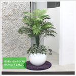 人工観葉植物 アレカヤシ 130cm