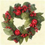 クリスマスリース/ディスプレイ 【グリーンリーフアップル】 直径約45cm 〔イベント パーティー〕