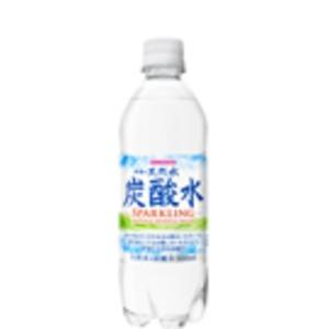 【まとめ買い】サンガリア 伊賀の天然水炭酸水 PET 500ml ×48本(24本×2ケース) - 拡大画像