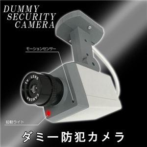 職場や家の玄関に 防犯できて安心 ダミー防犯カメラ 1個 - 拡大画像