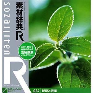 データクラフト 素材辞典[R(アール)] 024 新緑と若葉 HR-SR024 - 拡大画像