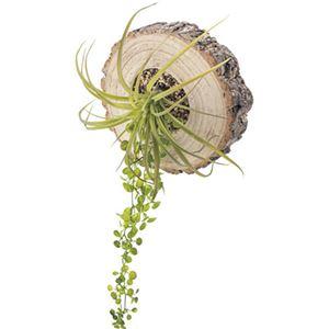 観葉植物/造花 【フェイクグリーン LFS-907】 ポリエチレン 天然木 〔部屋 内装 リビング ダイニング〕 - 拡大画像