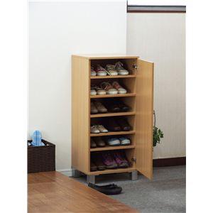 扉付きシューズボックス(靴箱/下駄箱) 【ワンドア/片開き】 可動棚 ナチュラル 【組立】