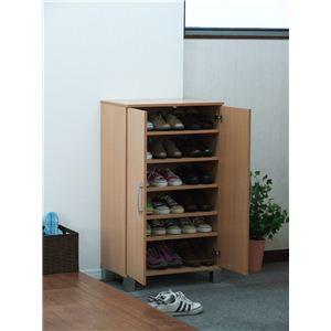 扉付きシューズボックス(靴箱/下駄箱) 【ツードア/両開き】 可動棚 ナチュラル 【組立】