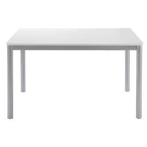 あずま工芸 ダイニングテーブル 幅120cm ホワイト TDT-1191