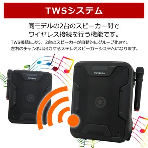 ポータブルスピーカー TY-1800