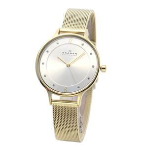 SKAGEN(スカーゲン) SKW2150 レディス腕時計 ラインストーンインデックス メッシュストラップ