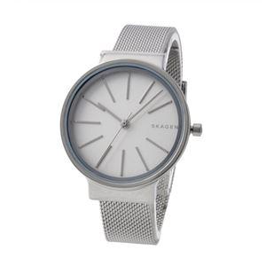 SKAGEN (スカーゲン) SKW2478 レディース 腕時計 - 拡大画像