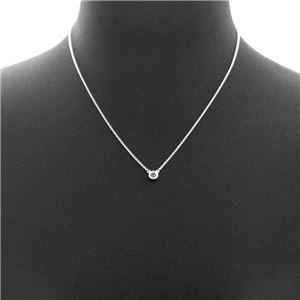 Tiffany (ティファニー) 60392544 エルサ・ペレッティ カラー バイ ザ ヤード アメシスト ペンダント ネックレス 41cm