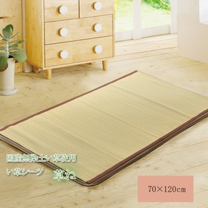 純国産/日本製 い草の敷きパット 『草ね 汗取りP』 約70×120cm 〔吸湿 抗菌 防臭効果〕 - 拡大画像