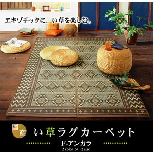 純国産/日本製 袋三重織 い草ラグカーペット 『Fアンカラ』 ブラウン 約191×250cm(裏:ウレタン) - 拡大画像