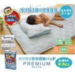 冷感 枕パッド 洗える 旭化成 ベンベルグ使用 『ガリガリ君 プレミアム』 43×60cm