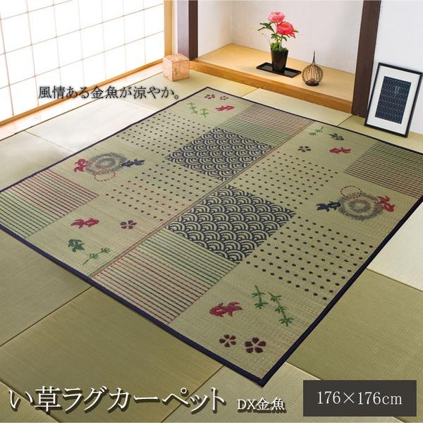 い草ラグカーペット 2畳 正方形 和柄 風物詩 『DX金魚』 約176×176cm (裏:不織布)
