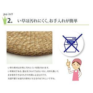 い草クッション 七島クッション 七島藺草 シート 座布団 円形 『シーグラス』 約40cm丸 2枚組