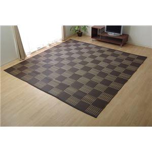ラグ 洗える PPカーペット 『ウィード』 ブラウン 本間8畳(約382×382cm)