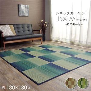 い草ラグ おしゃれ コンパクト シンプル カーペット 『DXモーセ』 ブルー 約180×180cm