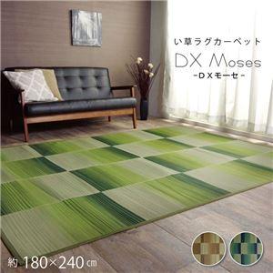 い草ラグ おしゃれ コンパクト シンプル カーペット 『DXモーセ』 ブルー 約180×240cm