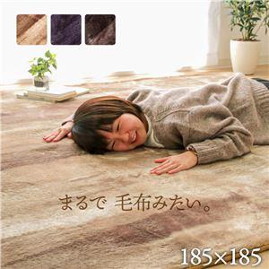 ふんわりタッチ ラグマット/絨毯 【ブラウン 無地調 約185×185cm】 洗える ホットカーペット 床暖房対応 〔リビング〕 - 拡大画像