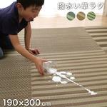 い草ラグ ラグ カーペット 約4畳 撥水 長方形 グリーン 約190×300cm(裏:ウレタン)