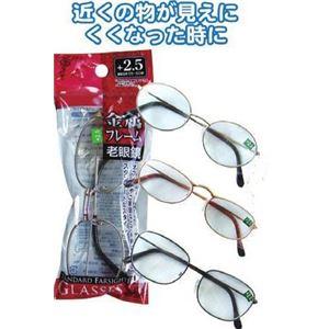 手軽で便利!スタンダード老眼鏡(+2.5) 【12個セット】 29-512 - 拡大画像